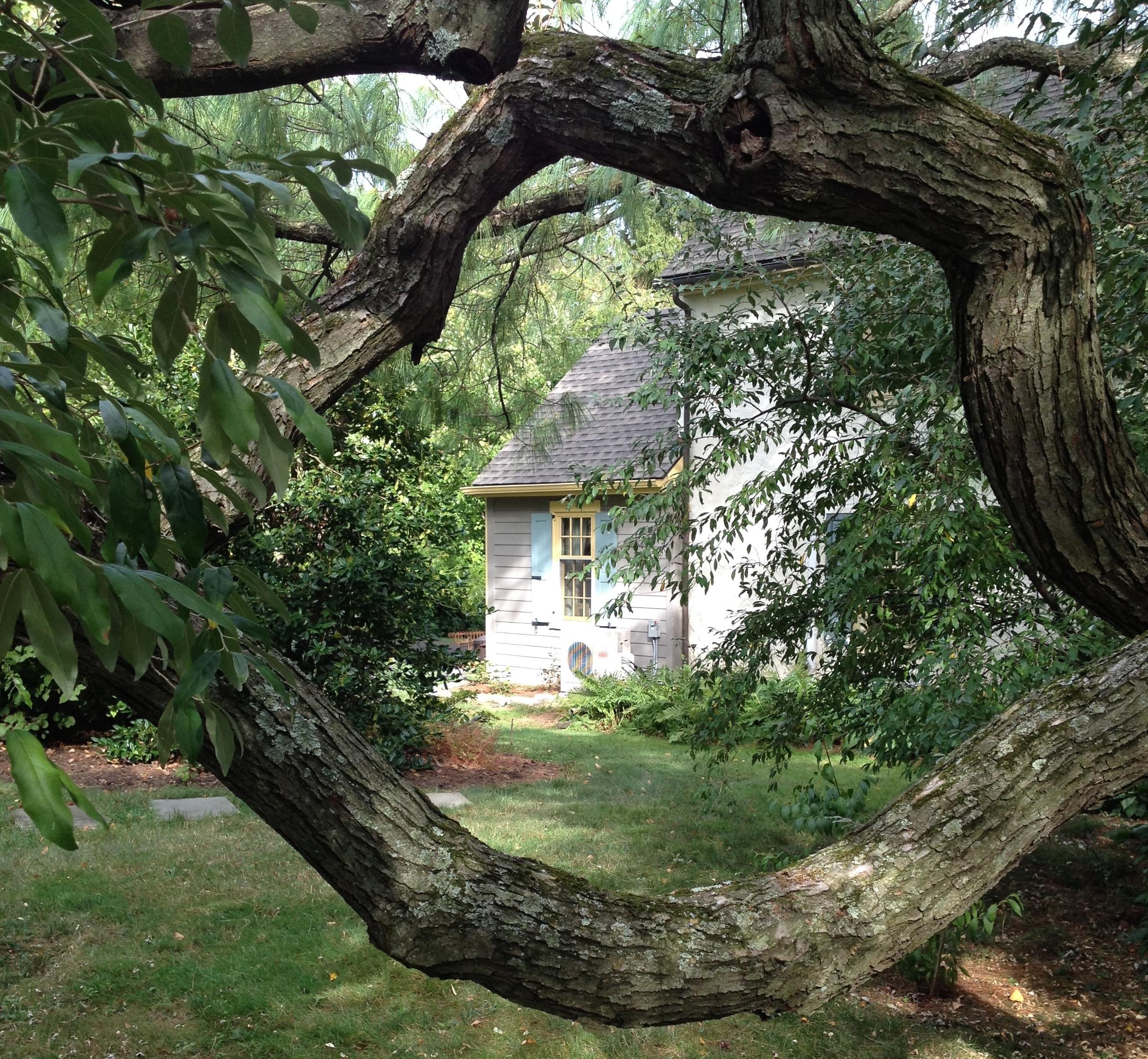 Exterior View #6