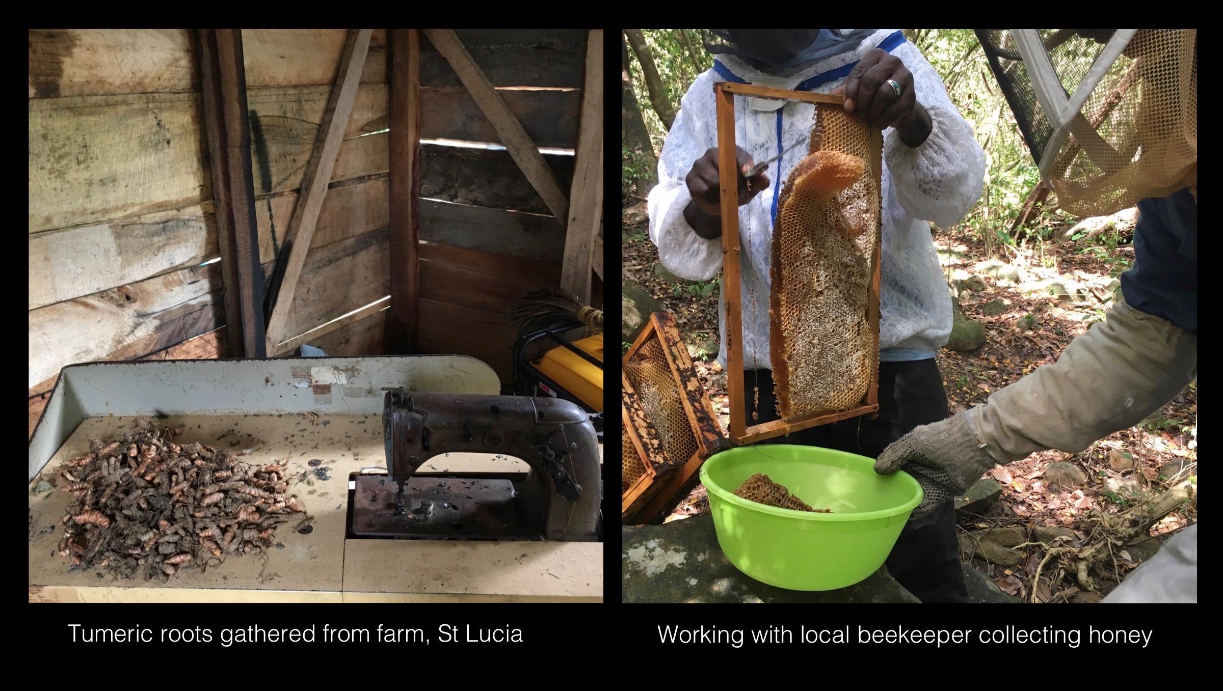 03_Rogers_St_Lucia_Farm.jpg