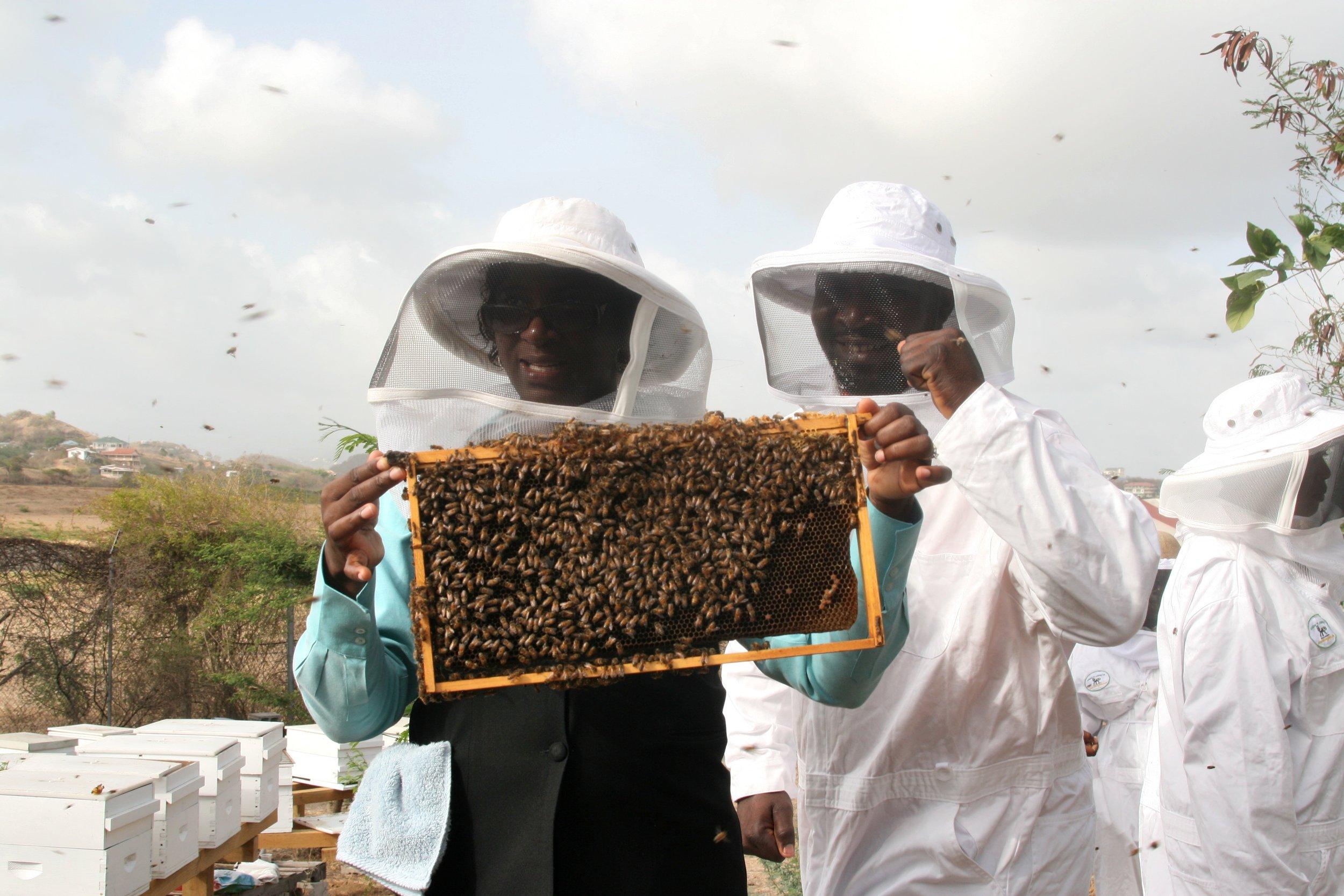 Grenada Woman Man frame bees.jpg
