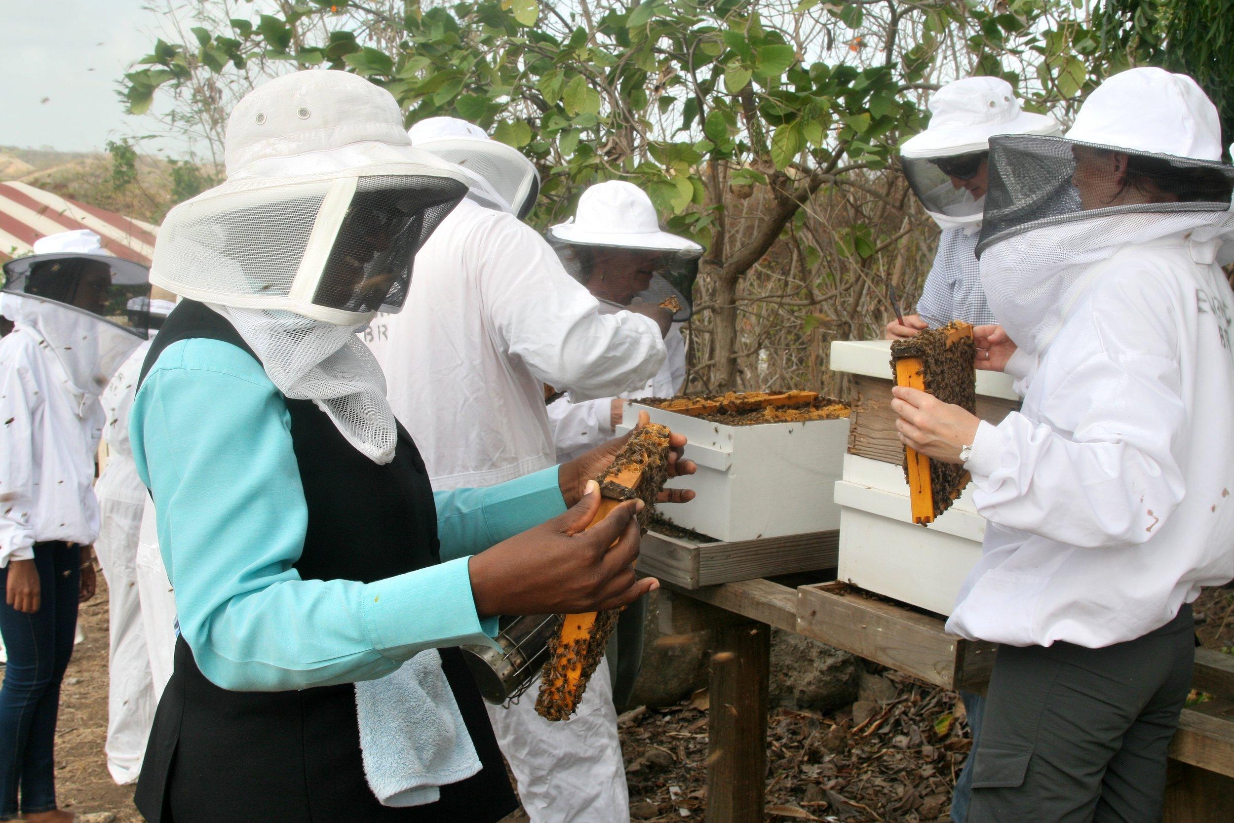 Grenada Bee College Woman Frame.jpg