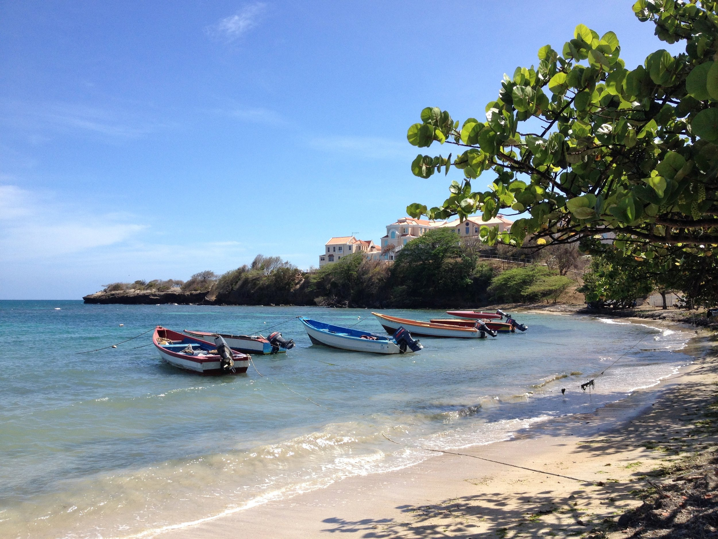 Grenada St George Boats.jpg