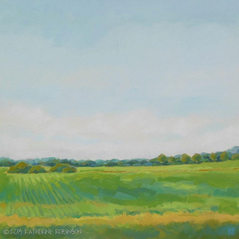 Blue Skies & Rolling Fields