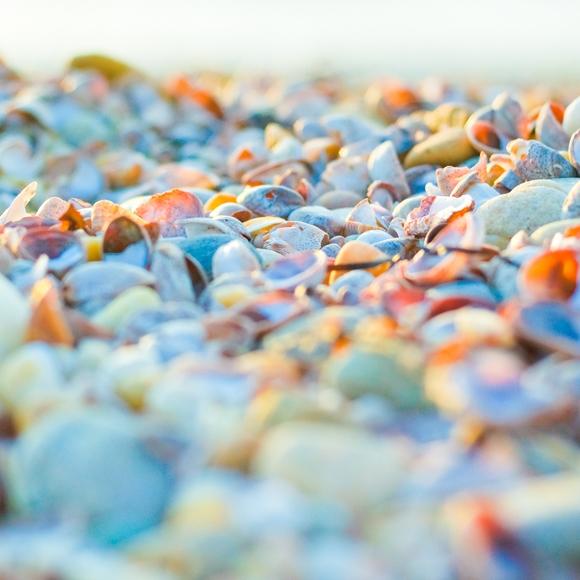 Pebbles V_40x60 Orange.jpg