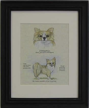 Custom Dog Print Chihuahua