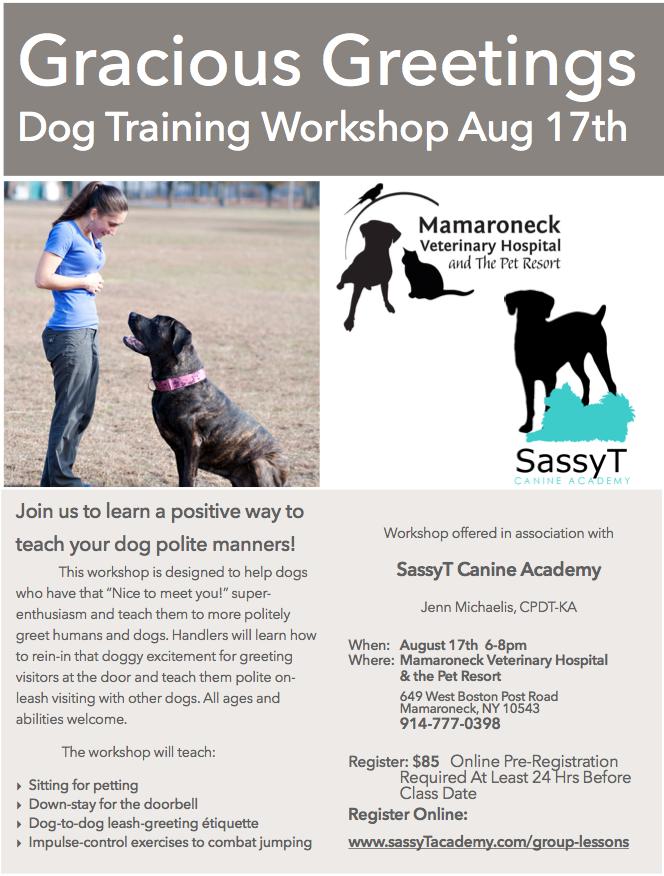 Register at:  www.sassyTacademy.com/group-lessons