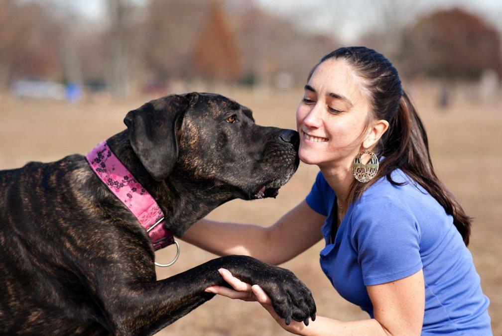 Helping People-Dogs Live-Harmoniously.jpg