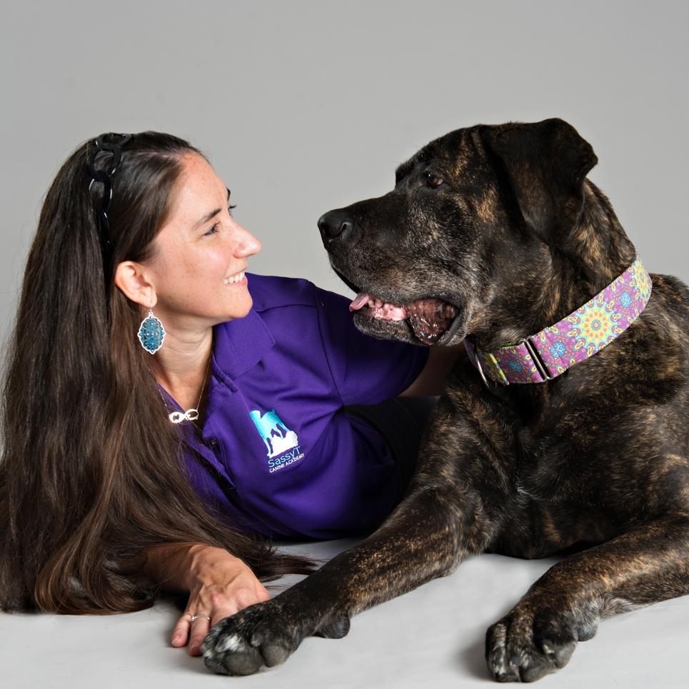 smart dog training sassyt cane corso
