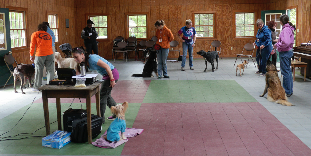 Campers teaching tricks and freestyle in the Iroquois Lodge at Camp Unleashed!