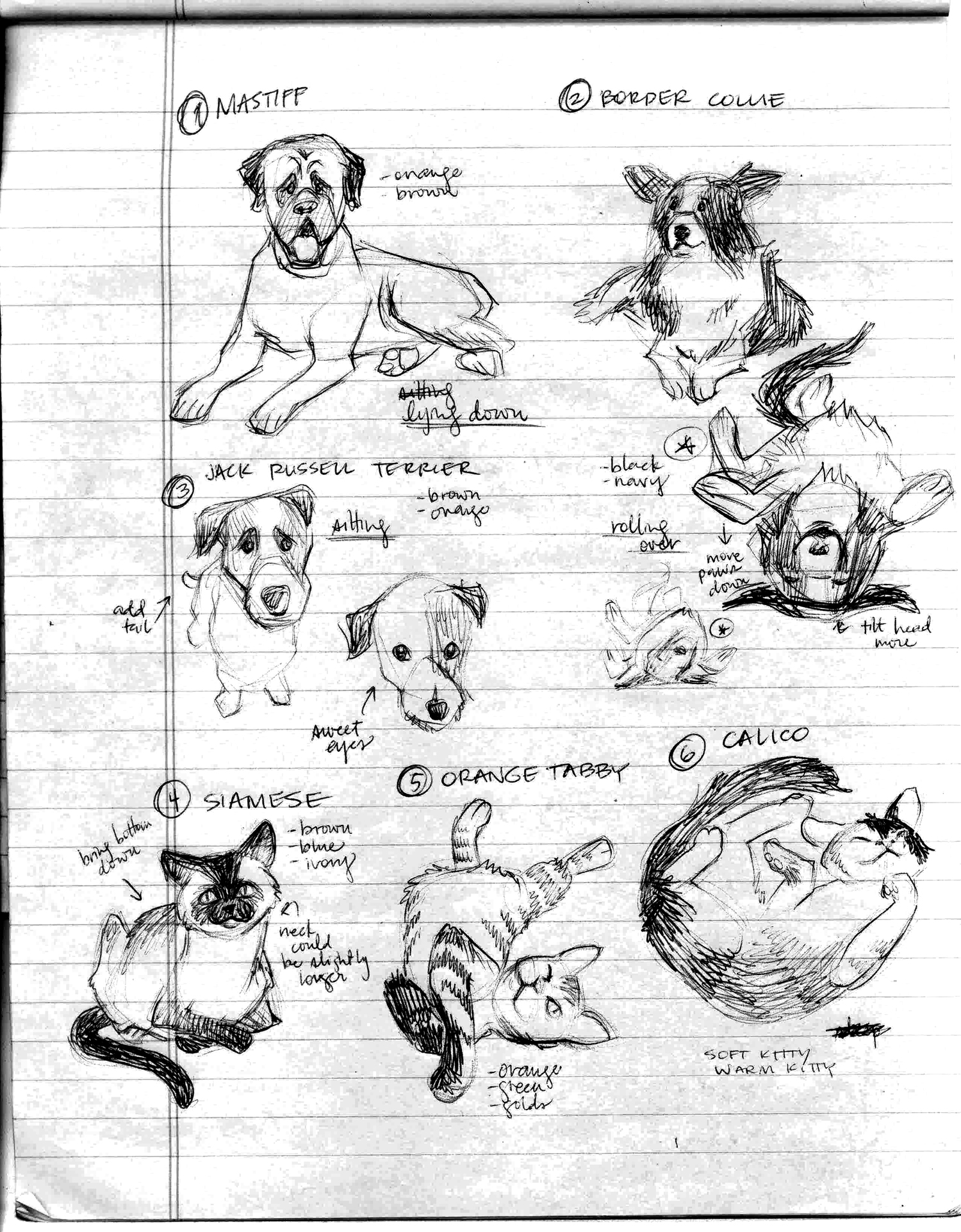 archer_malmo_pfizer_sketches.jpg
