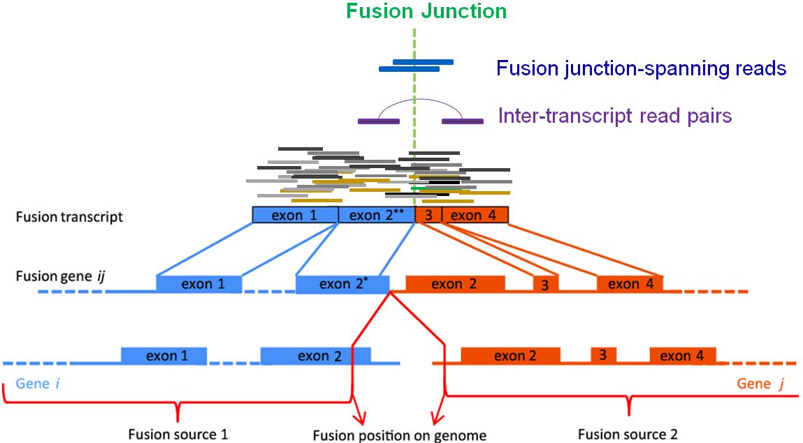 20140221_FusionMap.png