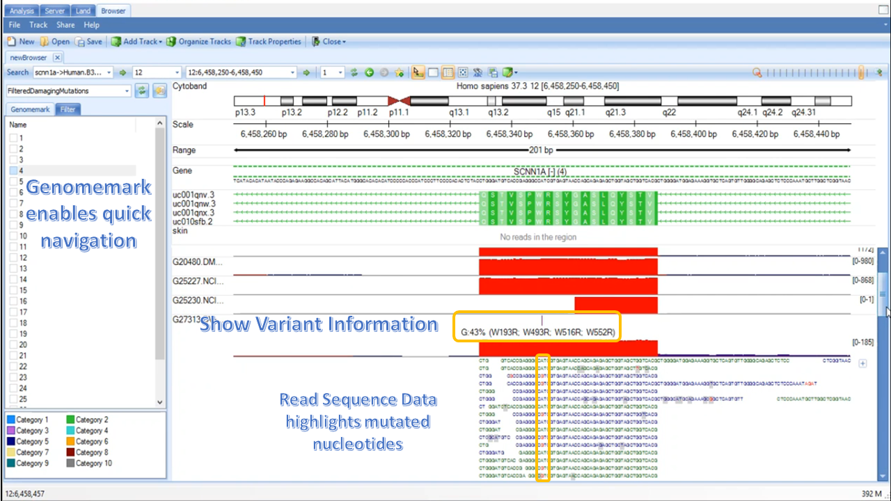 Variant information and aligned read sequence in .bam coverage track.