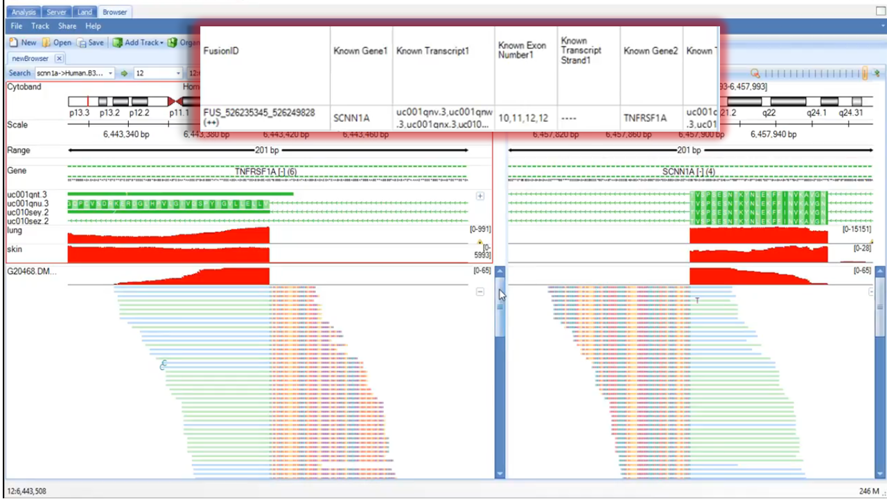 Fusion tracks for example fusion ID FUS_526235345_526249828(++)