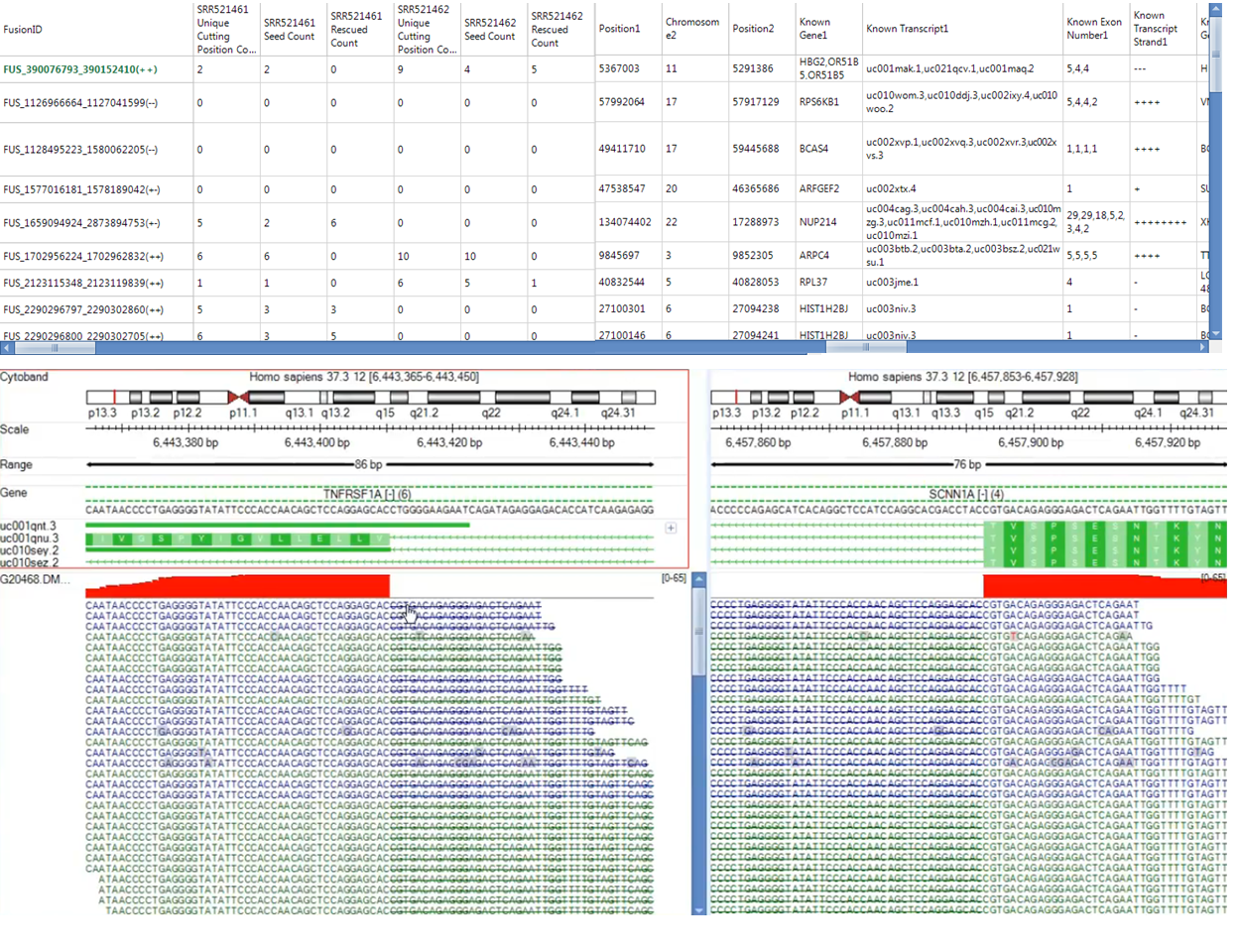 Fusion report reports fusion count data with fusion annotation information attached.  Fusion genome browser can display sequence information at base pair resolution  .