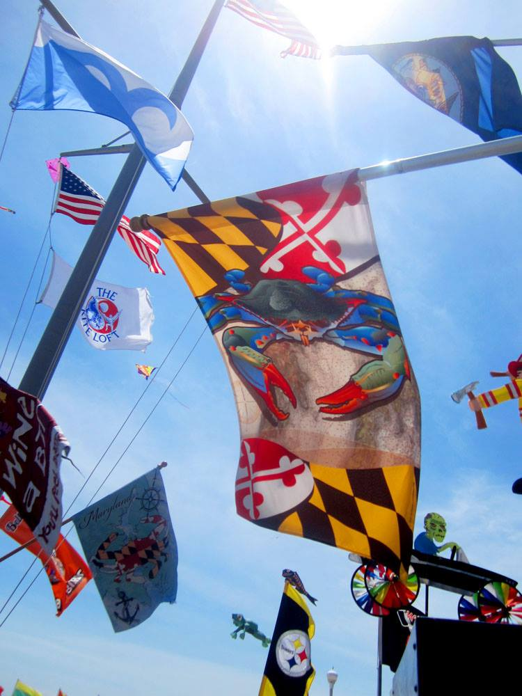 Our Maryland Blue Crab large house flag on display outside.