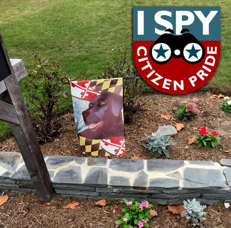 #ISpyCitizenPride Edgewater, Maryland