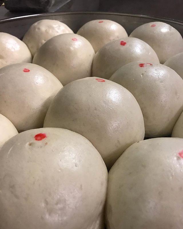 Sunday kine tingz #charhungsut #dimsum #ono #hawaii #honolulu #hawaiisbestkitchens #hawaiisfavorite #hawaiifoodie #eat #eats #grindz #oahu #eathawaii #eatlocal #localkinegrinds #local #foodie #food #noms #restaurant #takeout #chinatown #chinatownhi #manapua #chinesefood #yum #brokedamouth