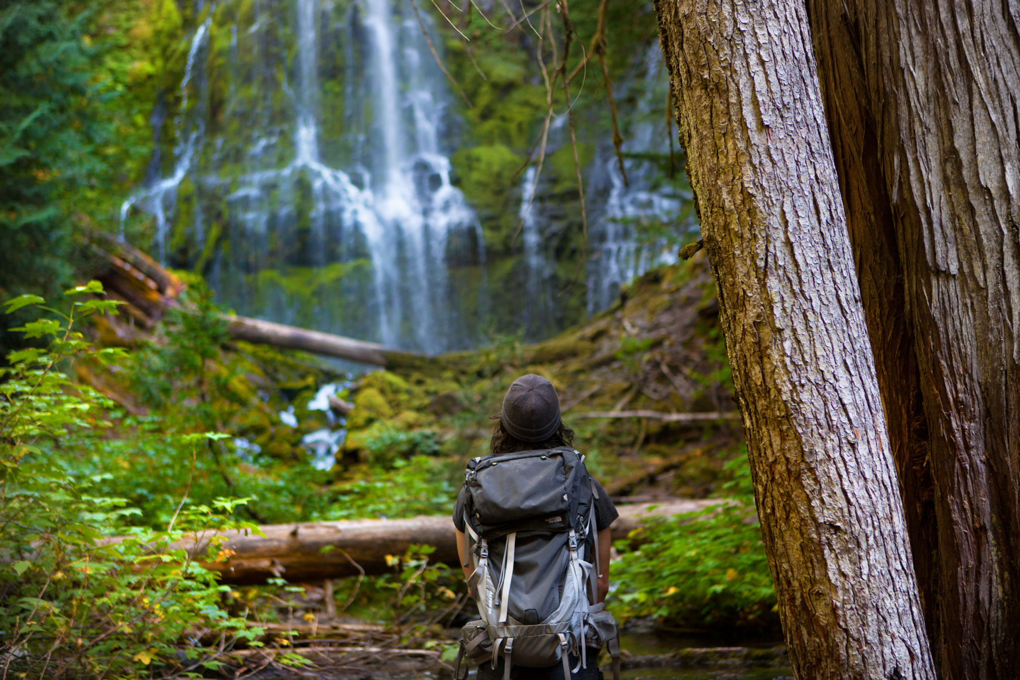 Viewing Proxy Falls from afar.