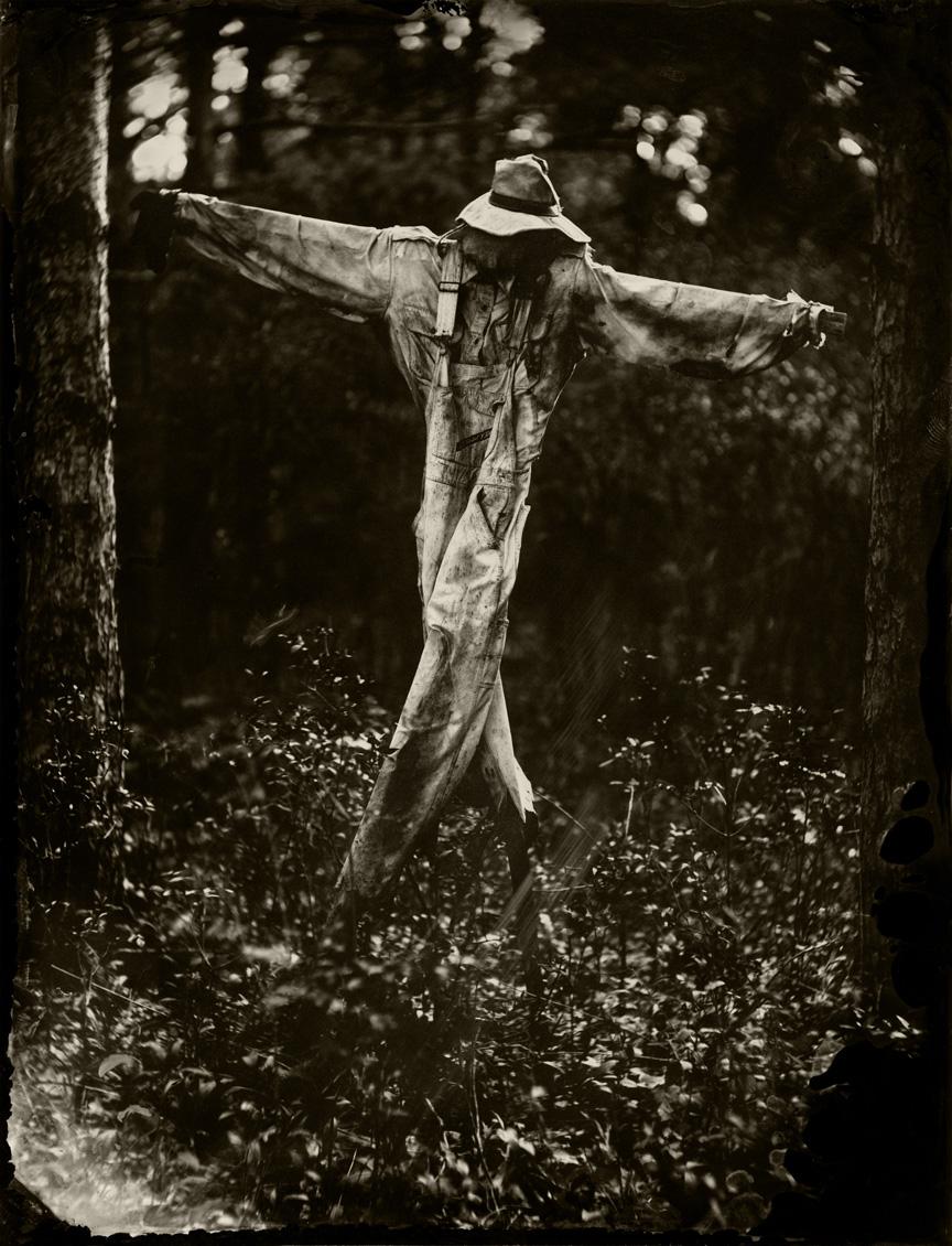 Scarecrow_print1.jpg
