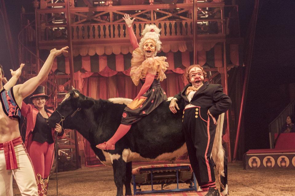 acrobuffos-madame-on-cow.jpg