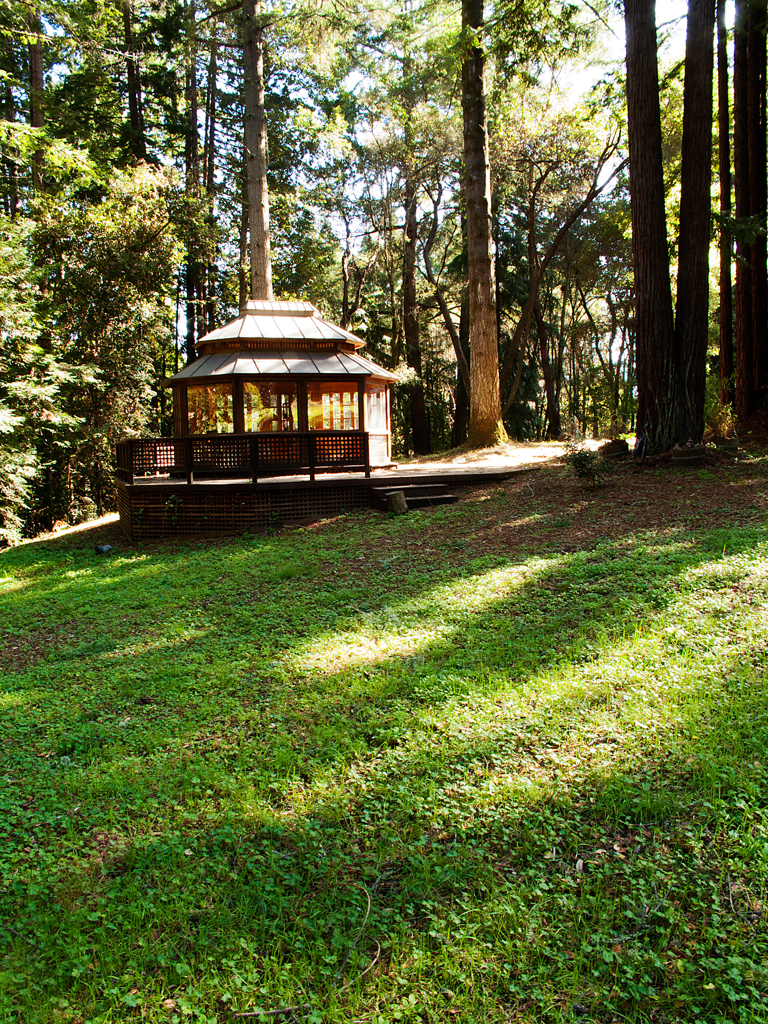 Gazebo in the Forest