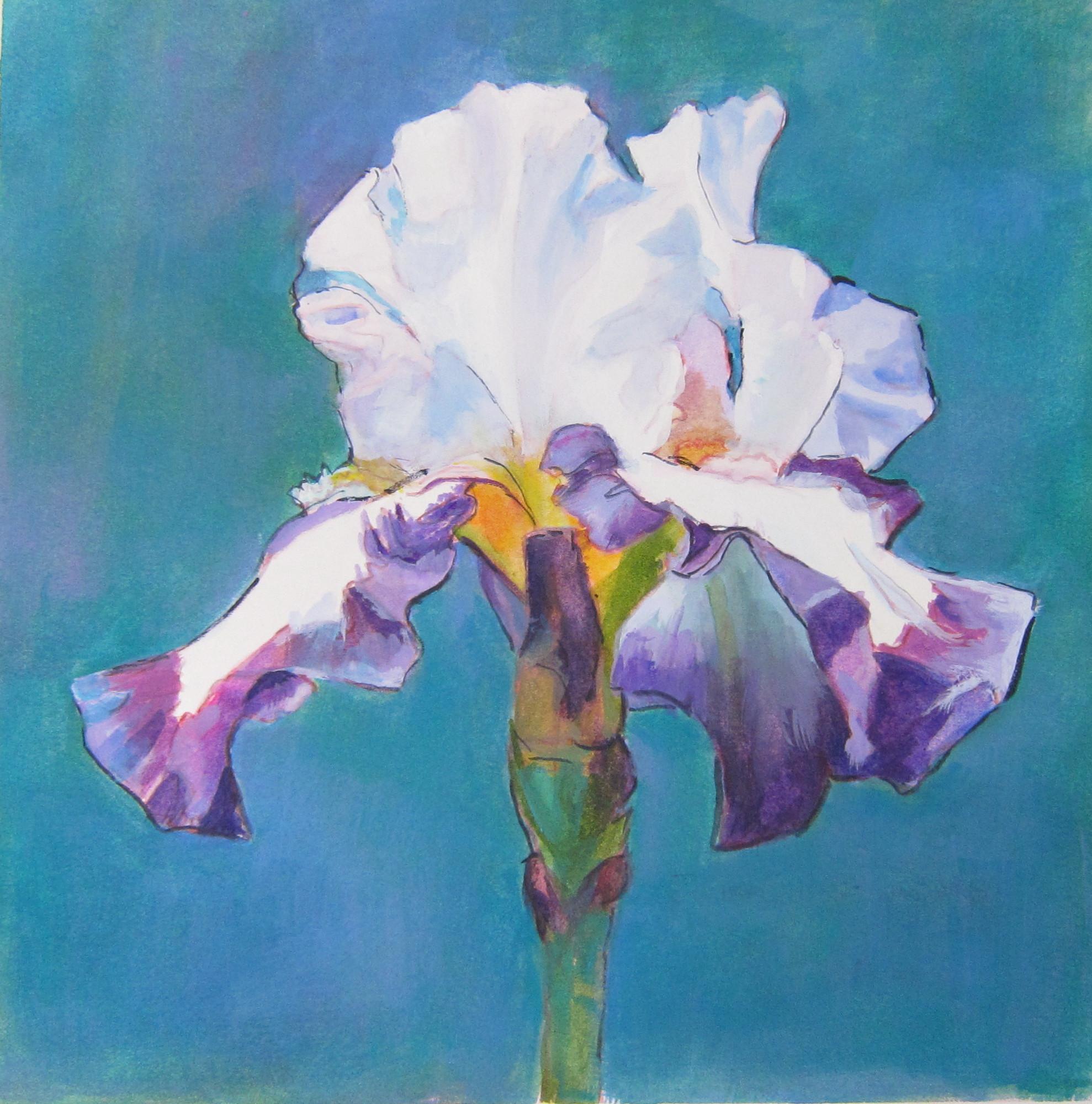Iris #5