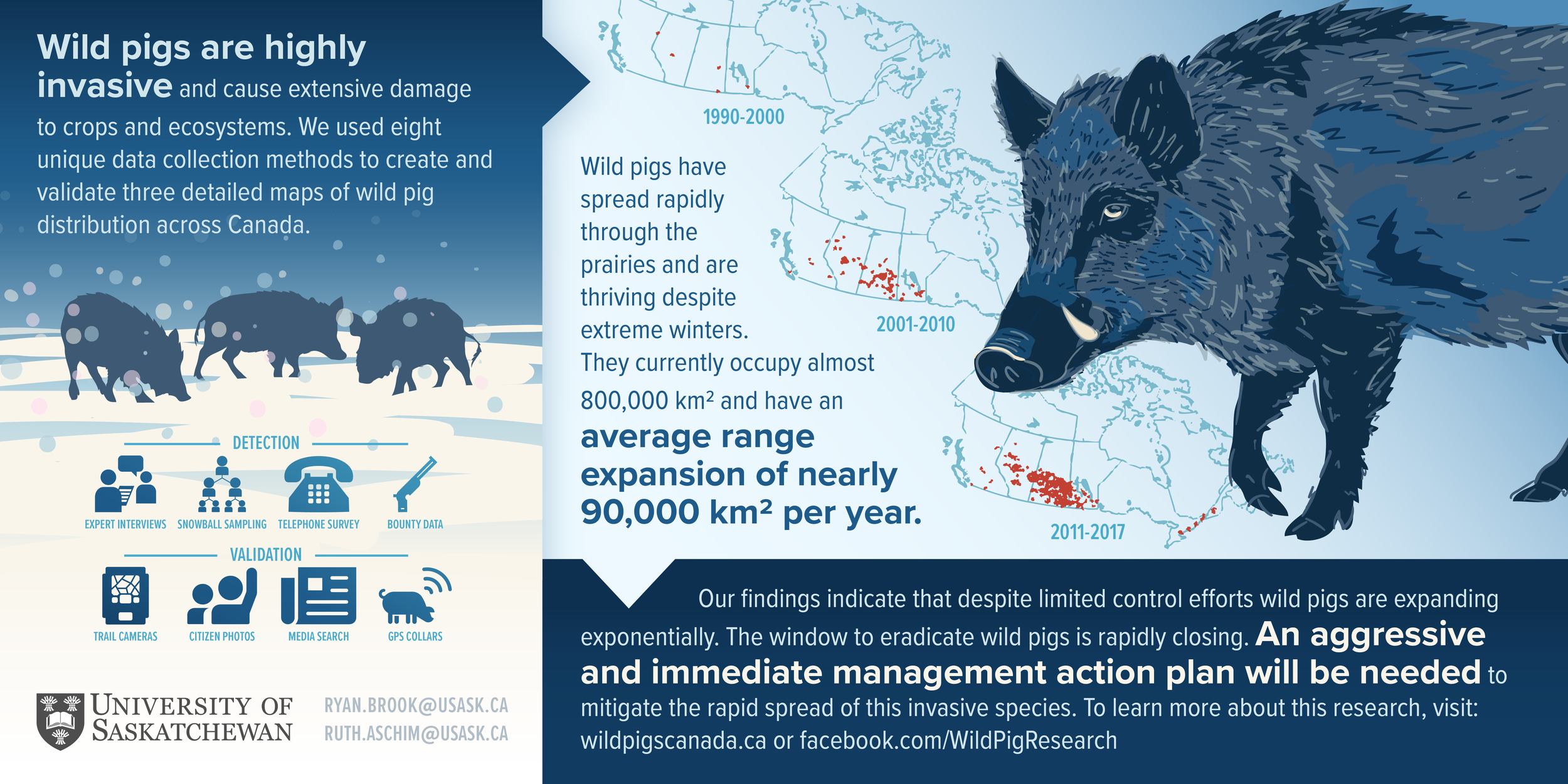 Brook_WildPigs_Infographic_V03_04.png