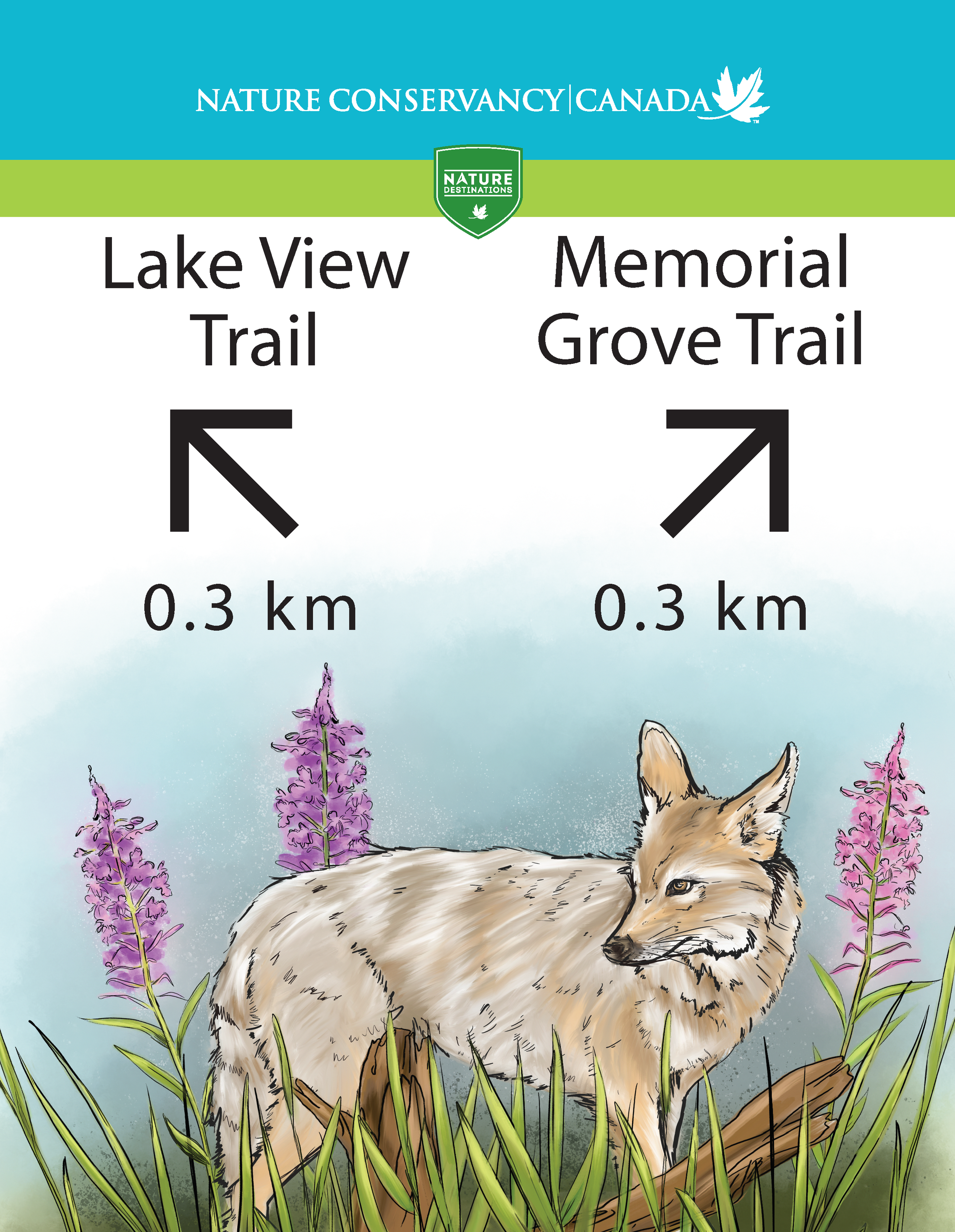 CoyoteLakeTrail_AllSigns_ForPrint_separated_02.png