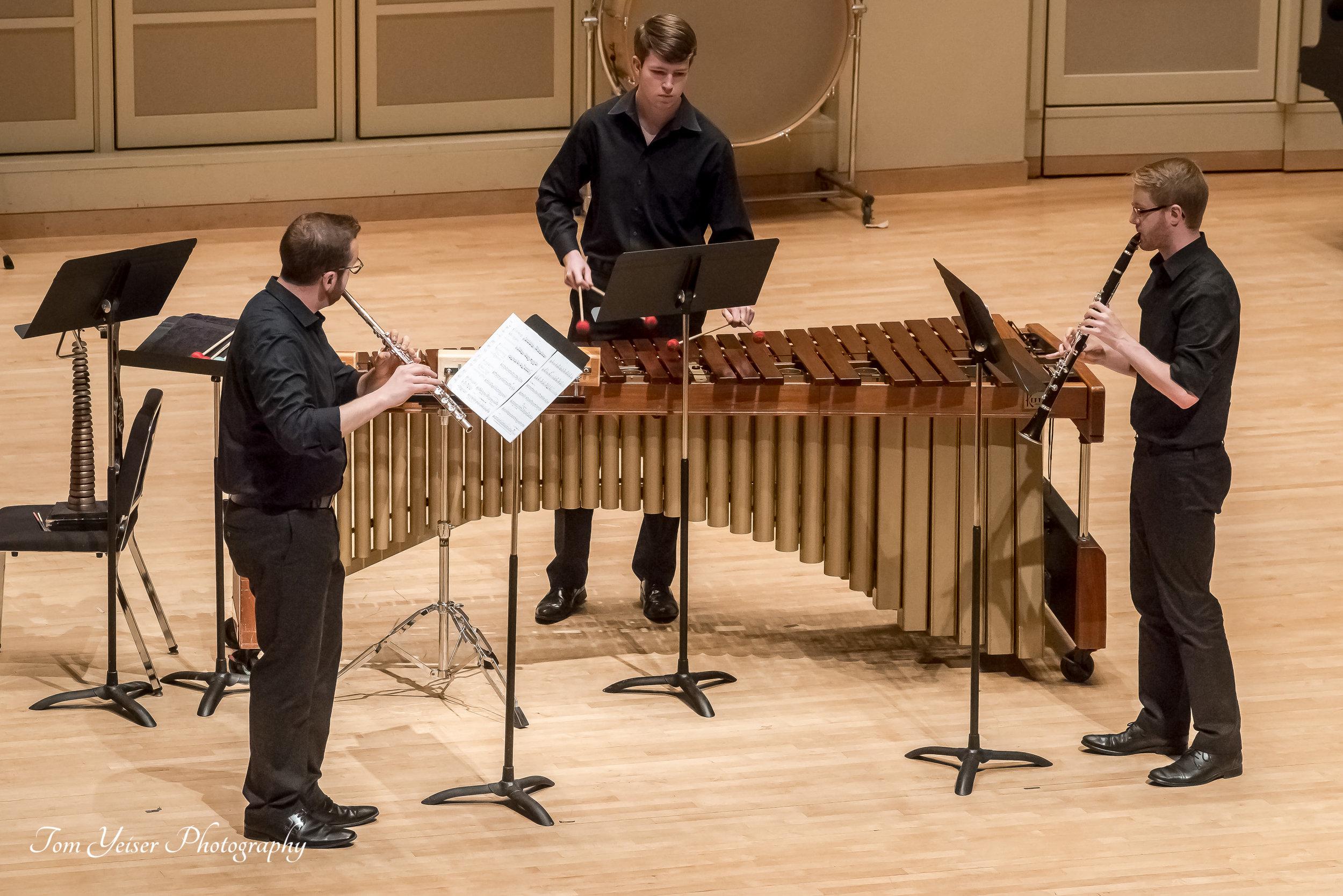 Trio for Flute, Clarinet & Percussion