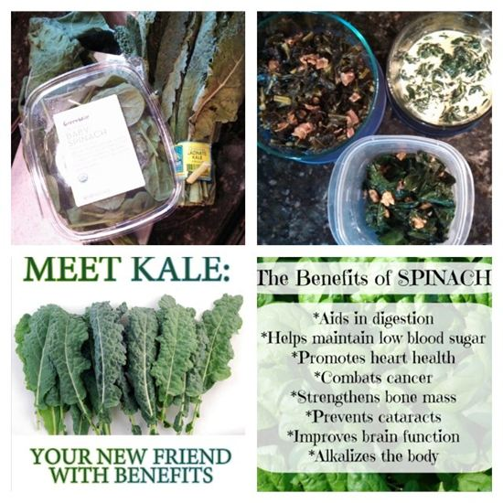 Blog 1 Spinach and Kale.jpg