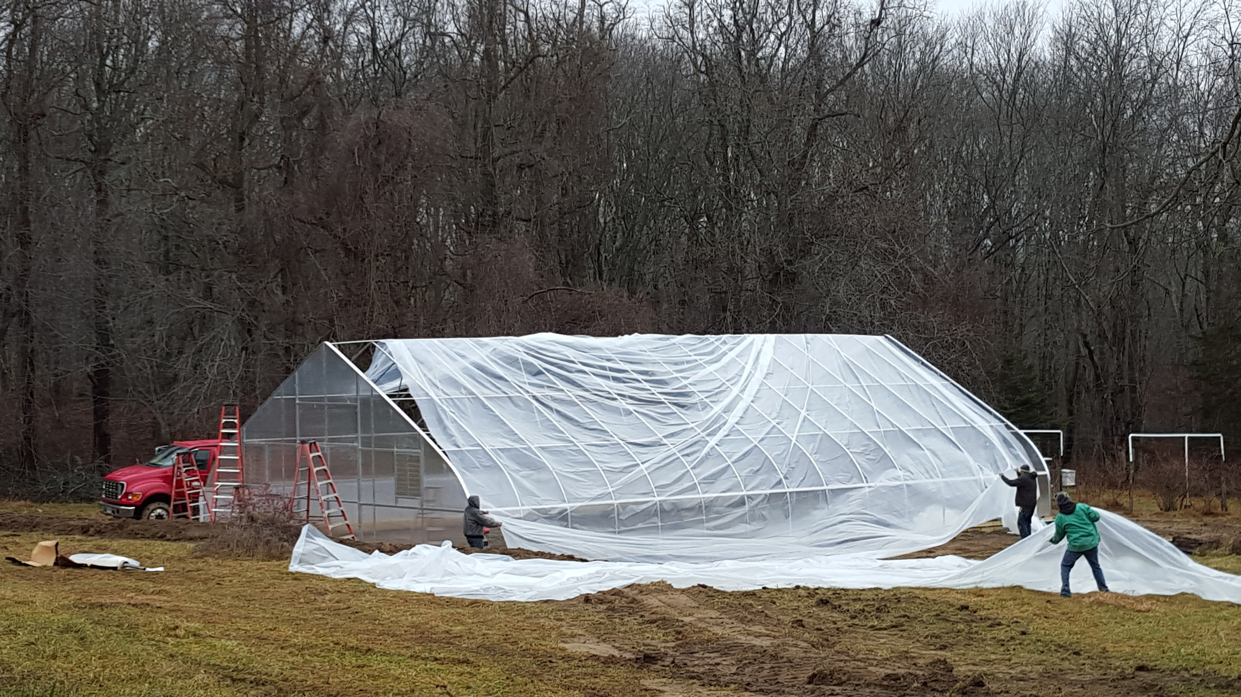 The new greenhouse going up.