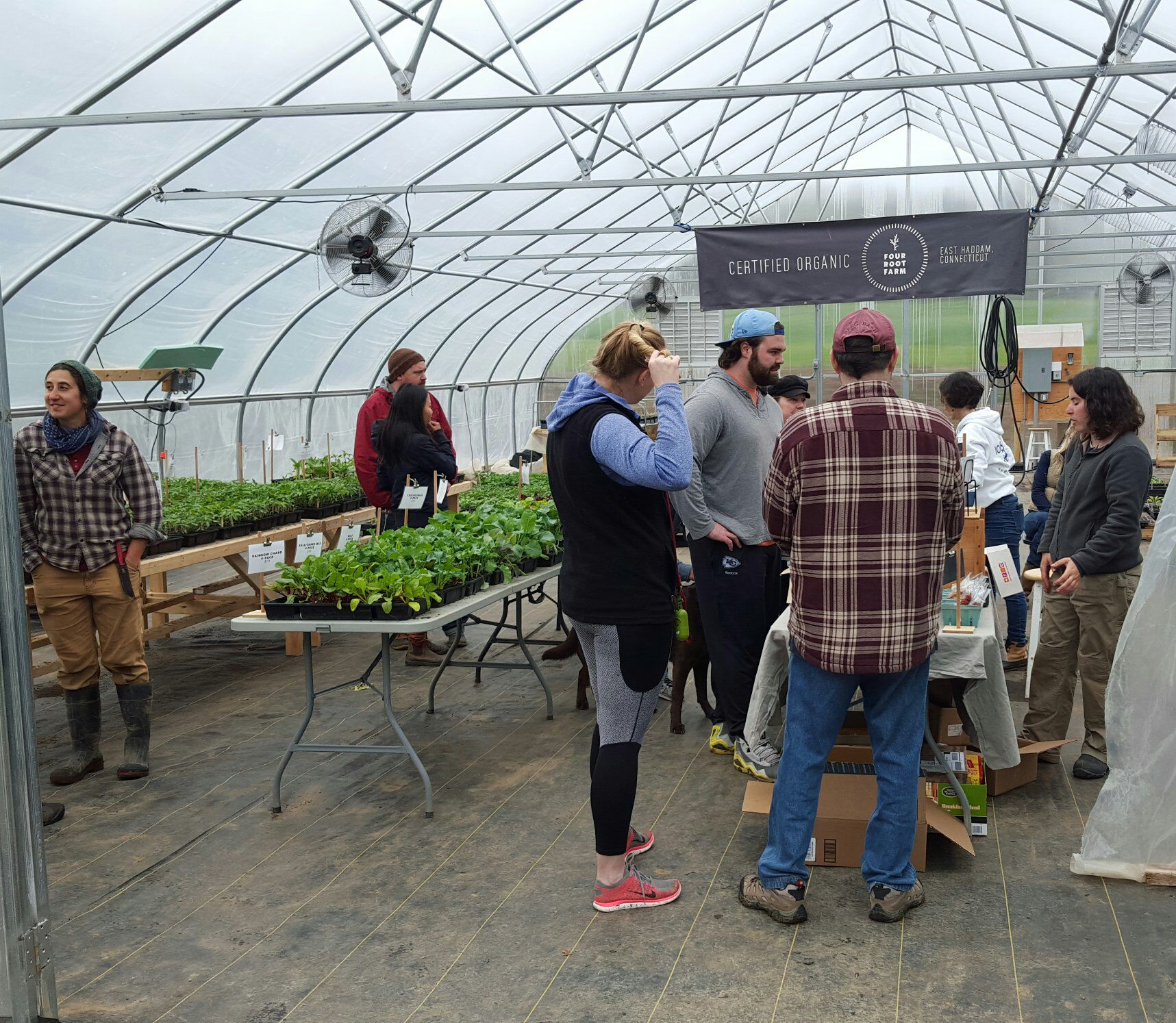 Last weekend's plant sale. Join us this Sunday for another round of delicious pizza and plenty of seedlings for your garden!