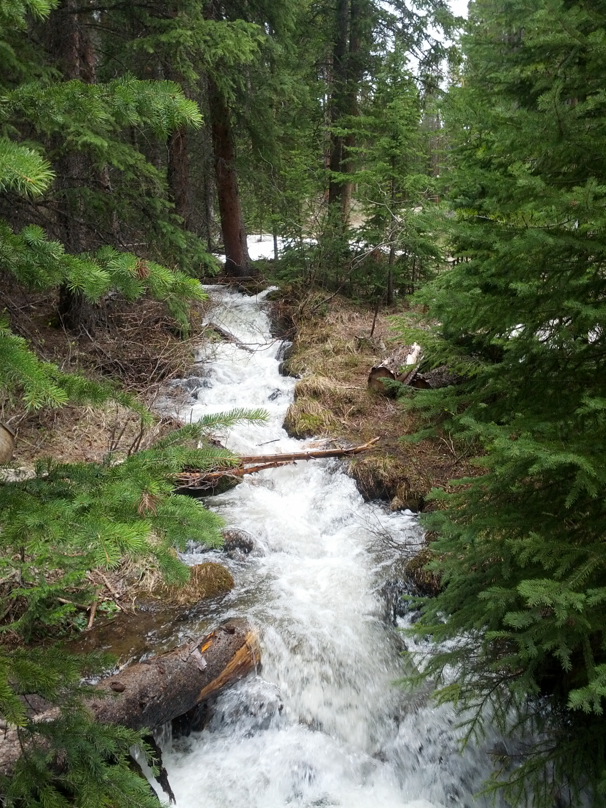 Creek on Pikes Trail Breckenridge, Colorado