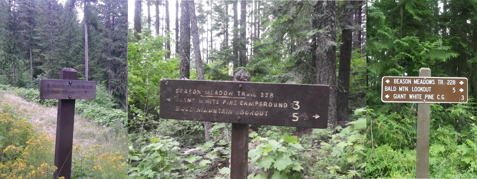 Bald Mountain Lookout 5 miles signs