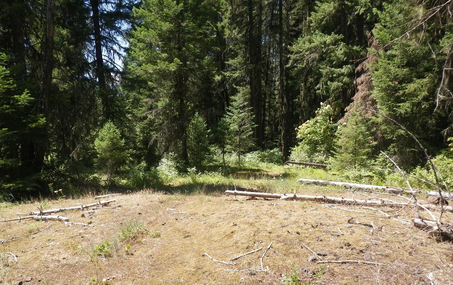 Lewis and Clark Trail Kamiah (1).JPG
