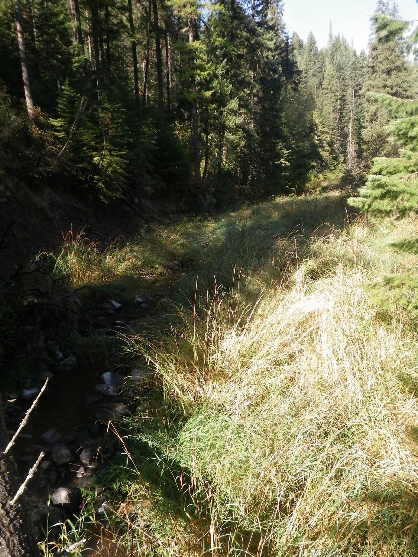 Troy RAil Trail 005.JPG