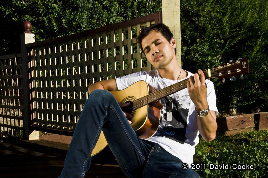 DCooke - Gazebo Guitar - 2012.jpg