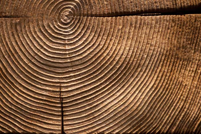 end-grain-wood-detail-m.jpg
