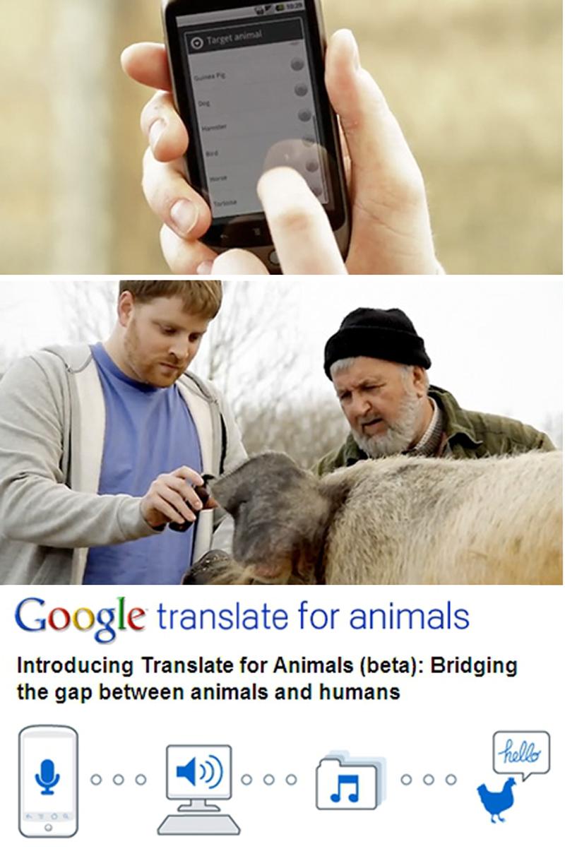 012_Translate_800px.jpg