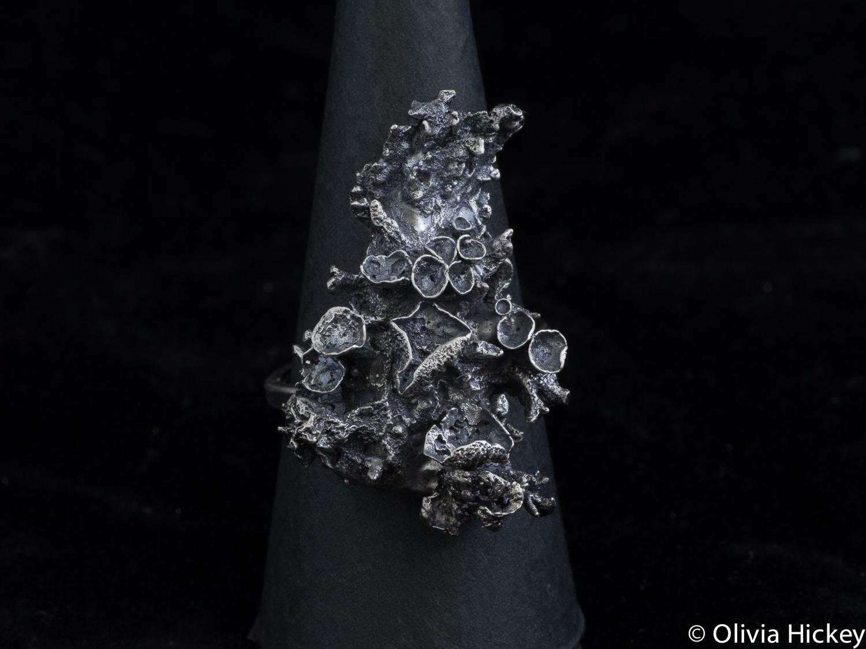 topohillia jewellery.jpg
