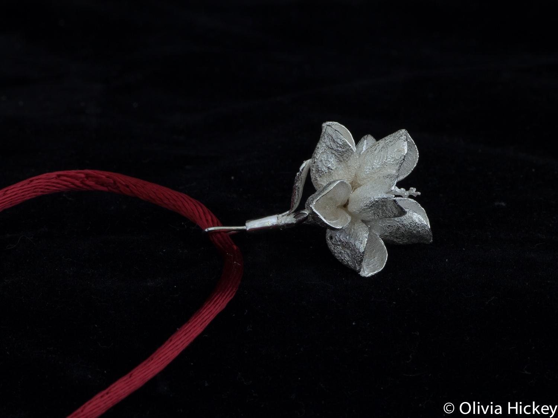 topohillia jewellery-2.jpg