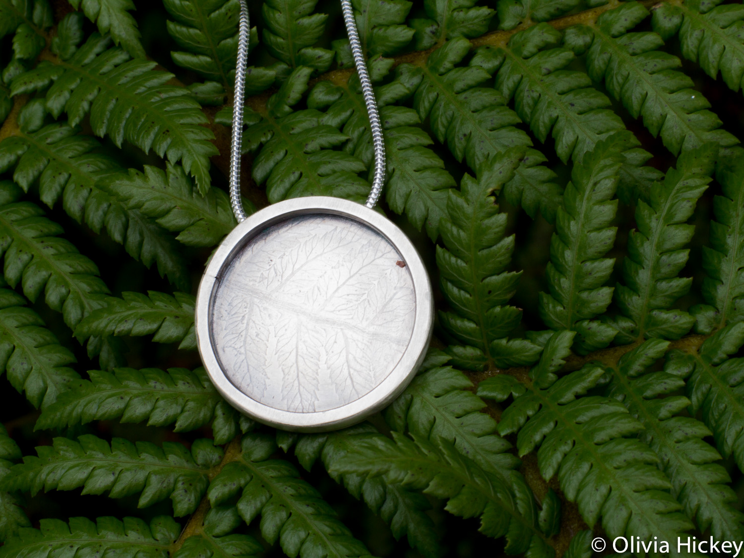 Tarkine Tree Fern pendant
