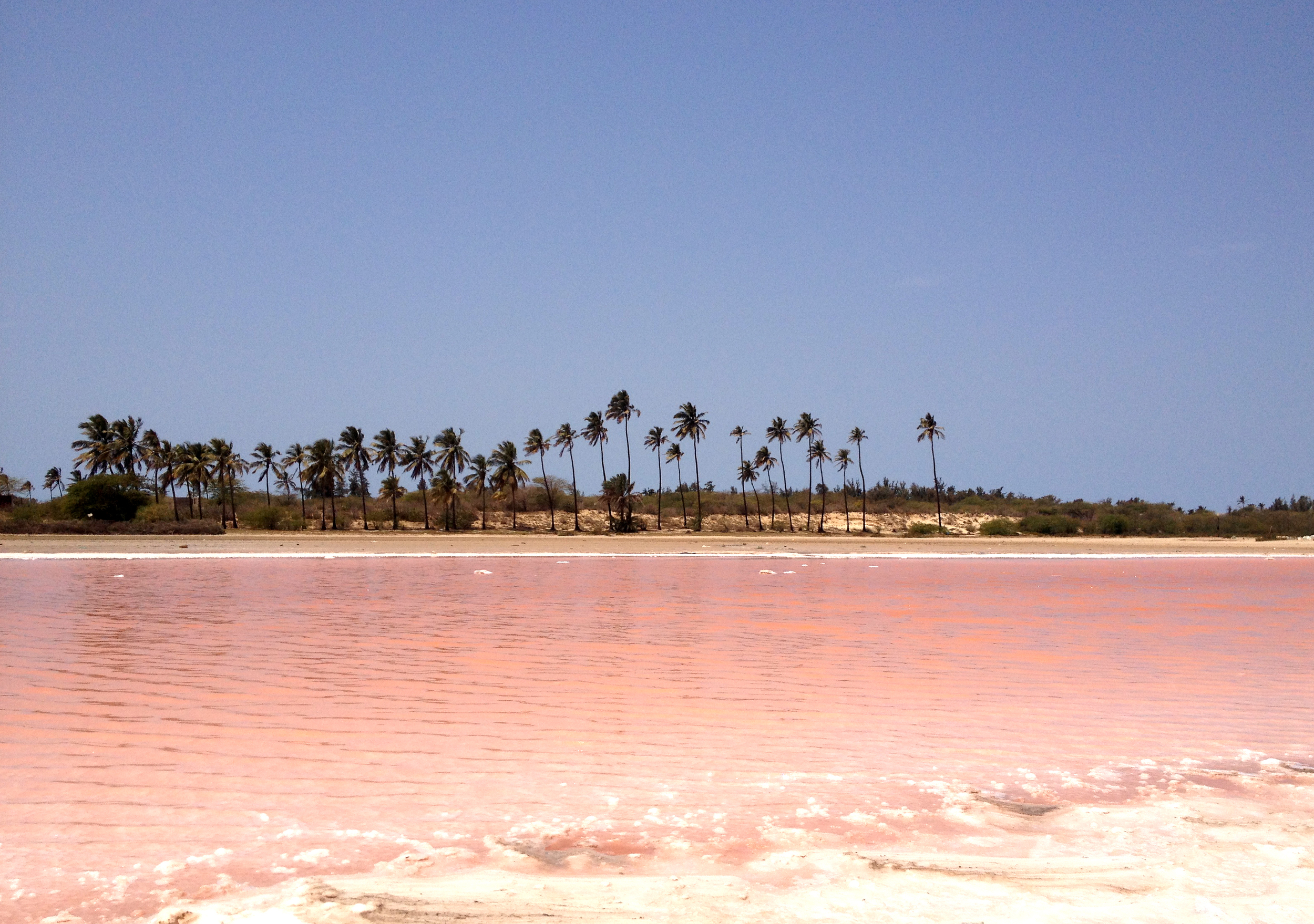 Amazing pink lake we found in our way to the Peulh Village, even people from Saint Louis don´t know about this incredible lake. There is also a big one very famous in Senegal.