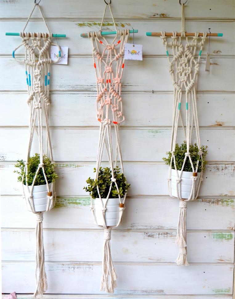 plant hang 1.jpg