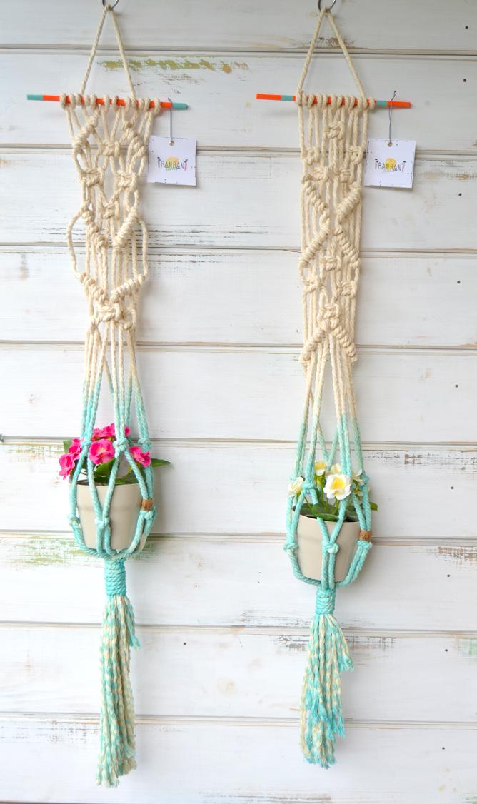 plant hang3.jpg
