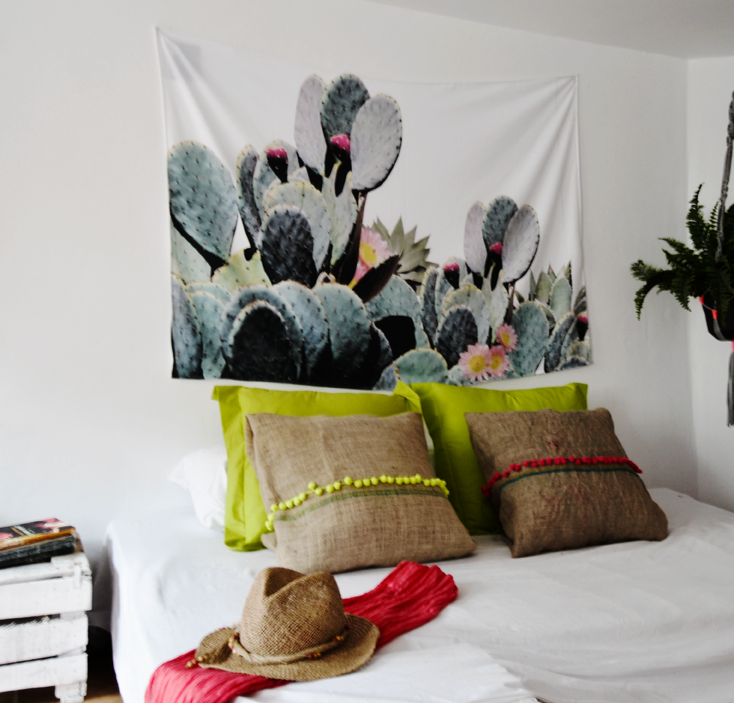 habita cactus.png