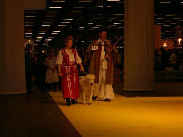 The Breed Parade 2006, at Stockholm's Dog Show (Stockholms Hundmässa). Michaela Munksgaard andRune Nilsson withMattiaci Season Ticket. Photo: Ariana Carlén.