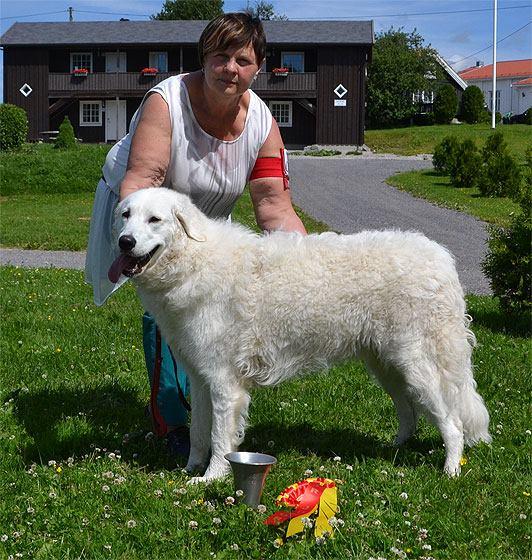 Docka (Fjellflokkens Areia Babóca) with Silvana in Vestby, Norway. Foto: Kjetil Nilsen.
