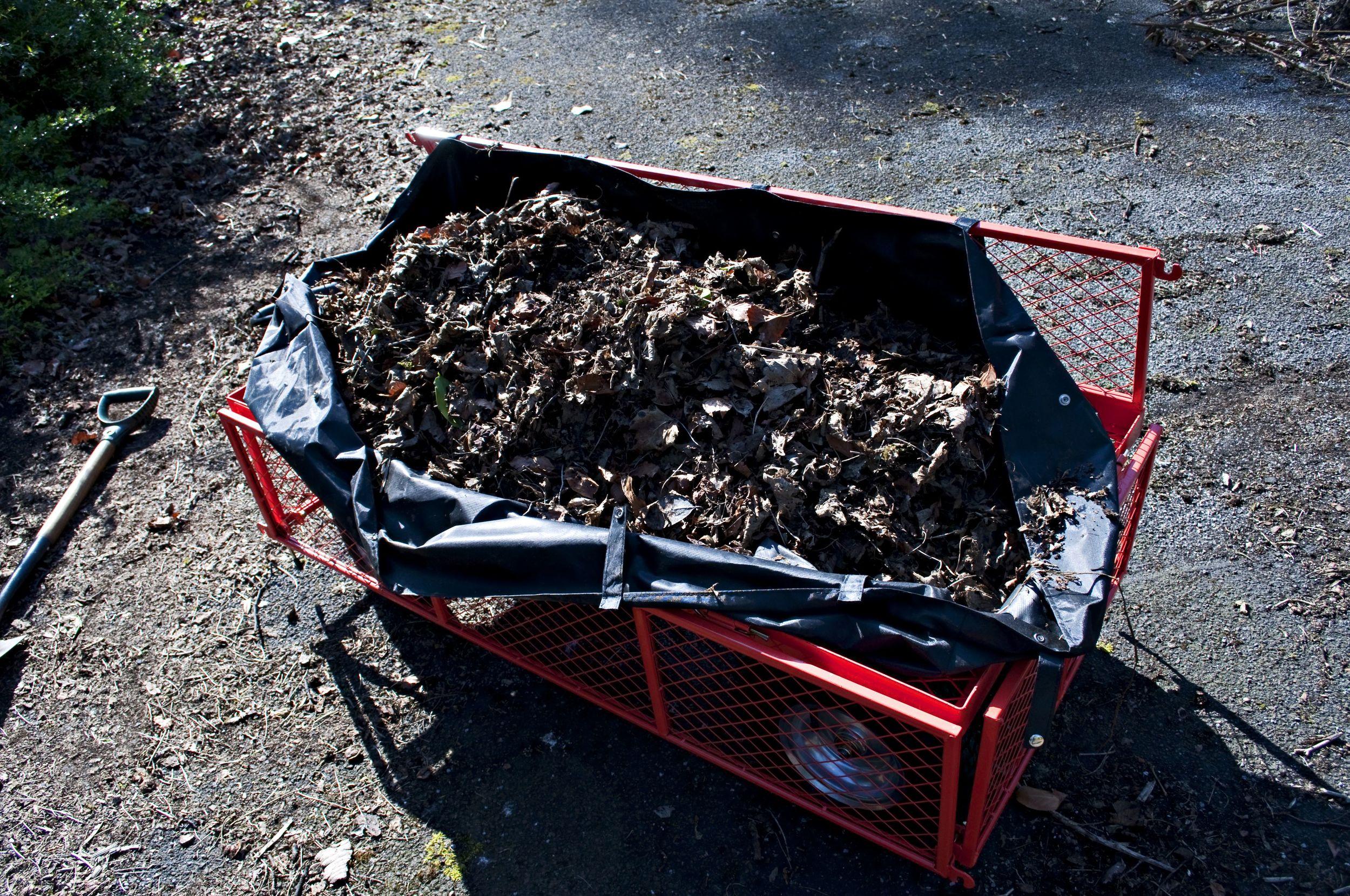 Compost gold - I hope