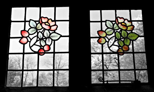 More briar roses