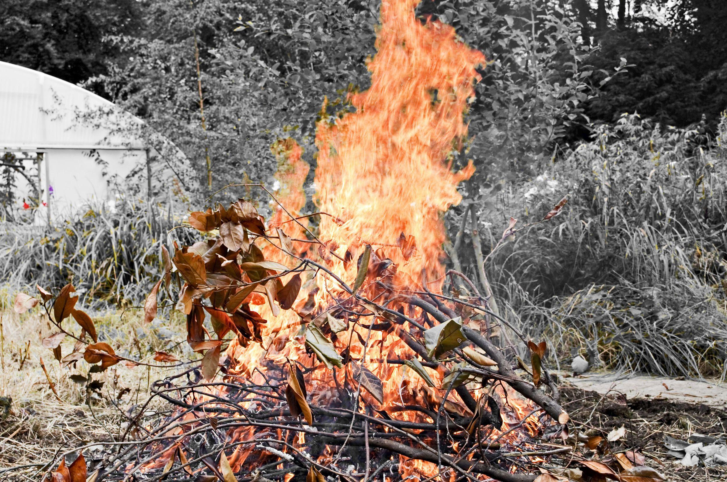 One of several bonfires